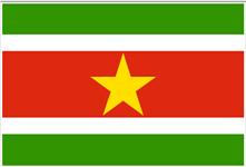 Flag of Republic of Suriname
